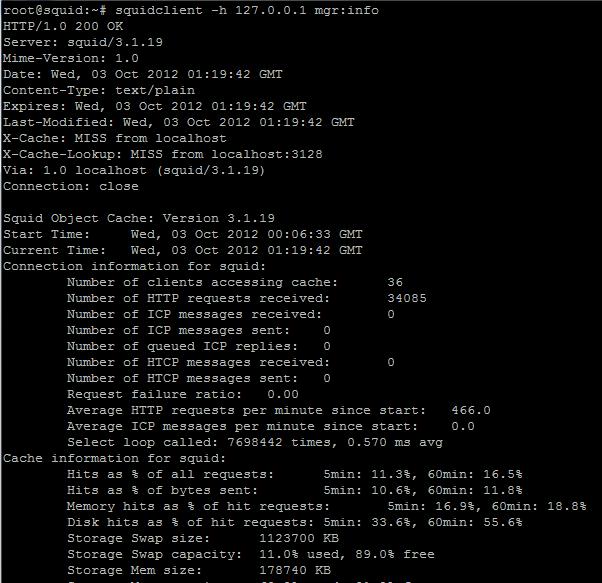 monitoring squid proxy dengan squidclient tool