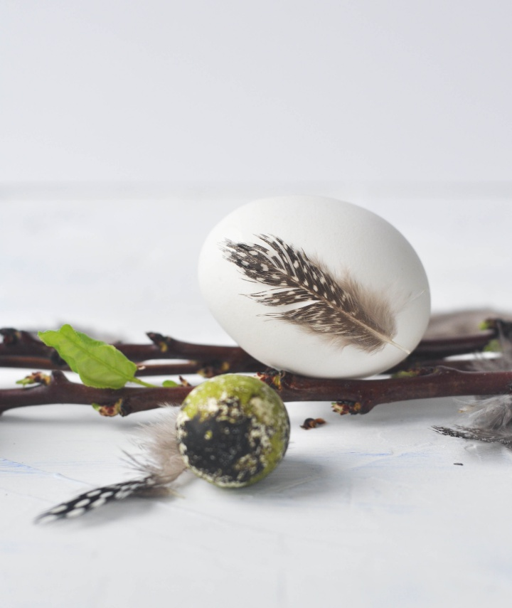 DIY Easter Eggs with natural feathers - minimalistic and beautiful