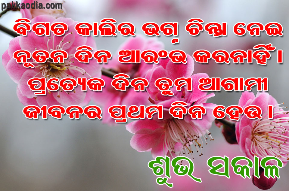Good Morning Quote - 08 | Pakka Odia