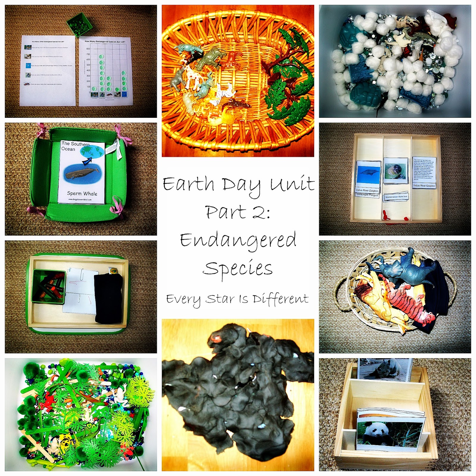 The Earth: Endangered Species and Habitats
