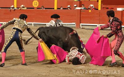 Cornada banderillero peruano Alex Matamoros Acho, Lima, cogidas, toros, toreros, corrida, novillada, bulls, bullfighting, tauromaquia, peru, rimac