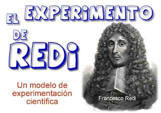 EDUpunto,Redi,experimento,ciencia,modelo