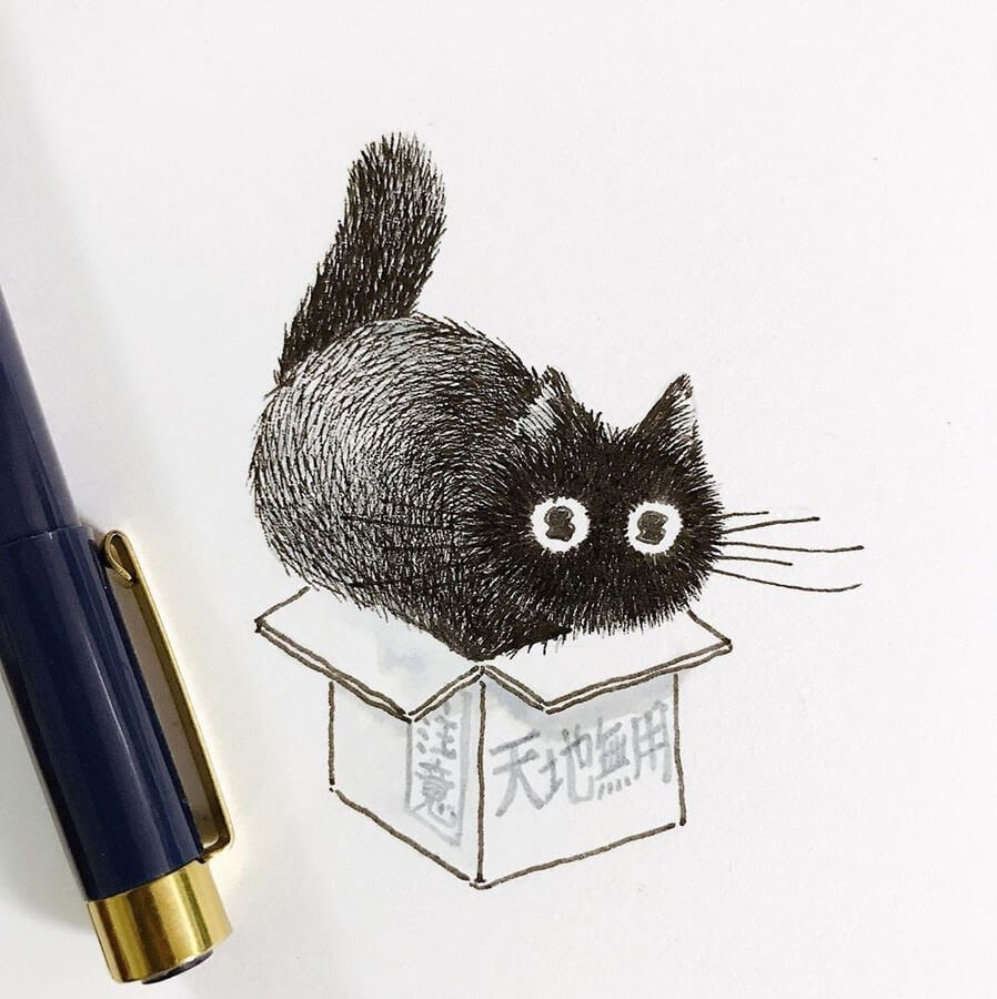 02-Cat-in-a-Box-Asa-Ishino-www-designstack-co