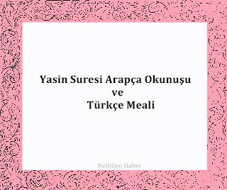 yasin suresi turkce meali