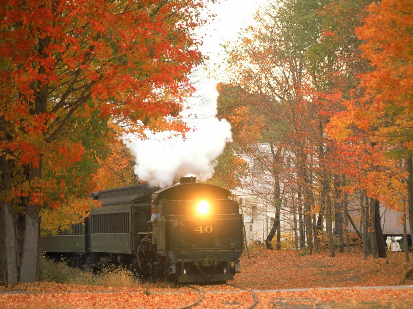 Gambar Kereta Api dengan Pemandangan Indah  Gambar Keren