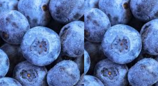 Blueberry meaning in hindi, Spanish, tamil, telugu, malayalam, urdu, kannada name, gujarati, in marathi, indian name, marathi, tamil, english, other names called as, translation