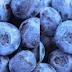 Blueberry meaning in hindi, Spanish, tamil, telugu, malayalam, urdu, kannada name, gujarati, in marathi, indian name, marathi, tamil, english, other names called as, translation