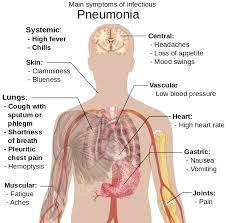 gejala ,penyebab,cara herbal mengobati penyakit paru paru