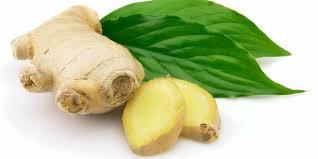 5 أعشاب تقاوم سرطان القولون