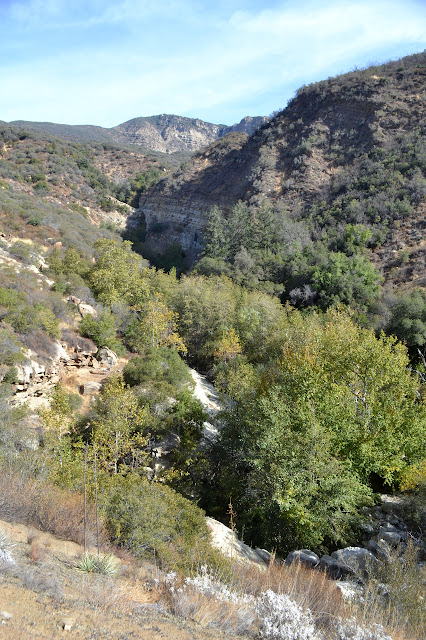more up canyon
