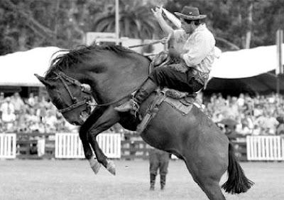 Foto de un jinete domando a su caballo