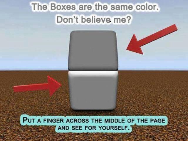 Optical Illusion Same Color Boxes