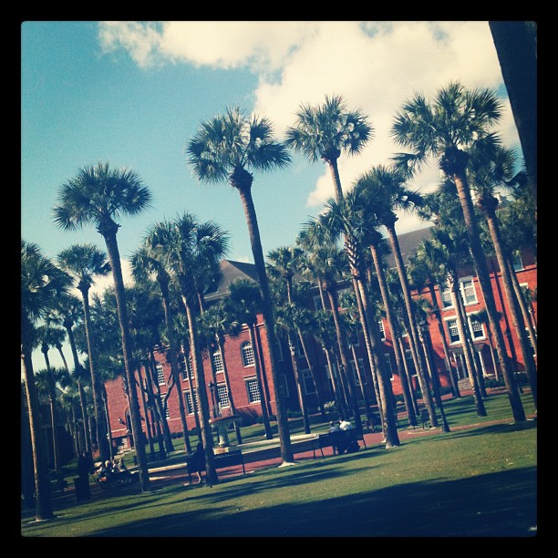 eb96e06e Coming for a visit at Stetson University? Here are some things to do and  places to visit on and off campus, according to real Stetson students.