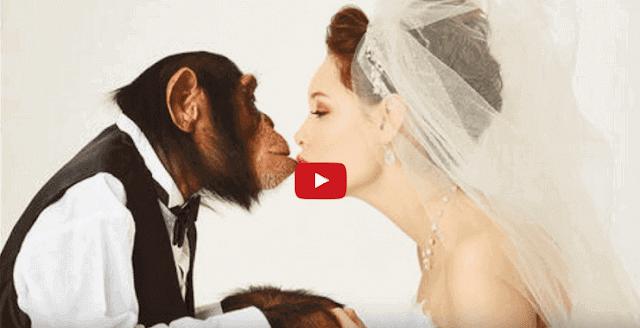 اغرب العلاقات التي حدثت بين البشر والحيوانات
