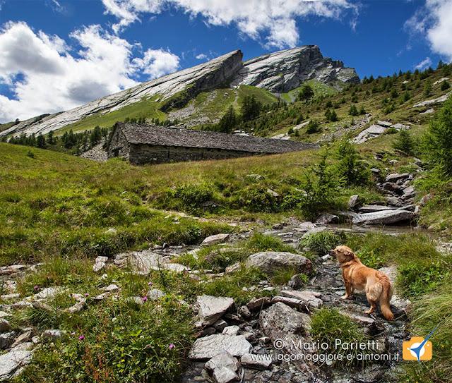 Alpe i Motti con la Pioda di Crana, valle Vigezzo