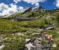 Alpe i Motti in Vale Vigezzo