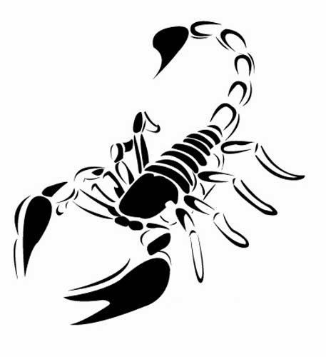 Scorpion tattoo stencil