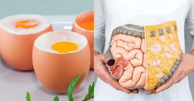 Белок — настоящий чудотворец! Вот почему тем, кому за 40, нужно съедать по 3 яичных белка в день…