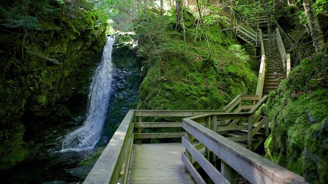 Parque Nacional Fundy