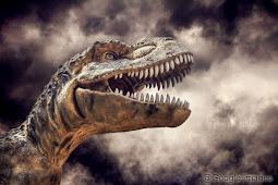 Mengenal Dinosaurus
