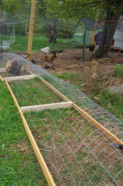 ทางเดินไก่บ้านป้องกันขี้ไก่
