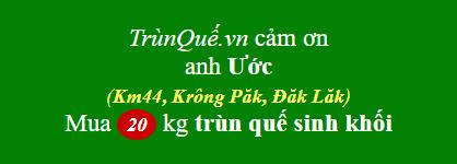 Trùn quế TT Phước An, Krông Păk