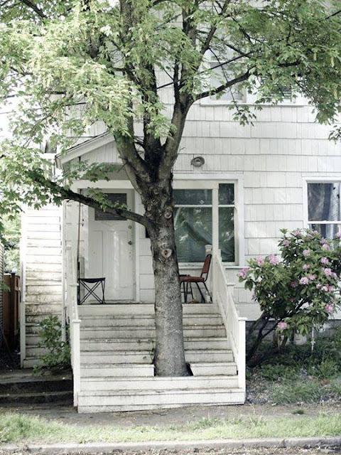สร้างบันไดบ้านครอบต้นไม้