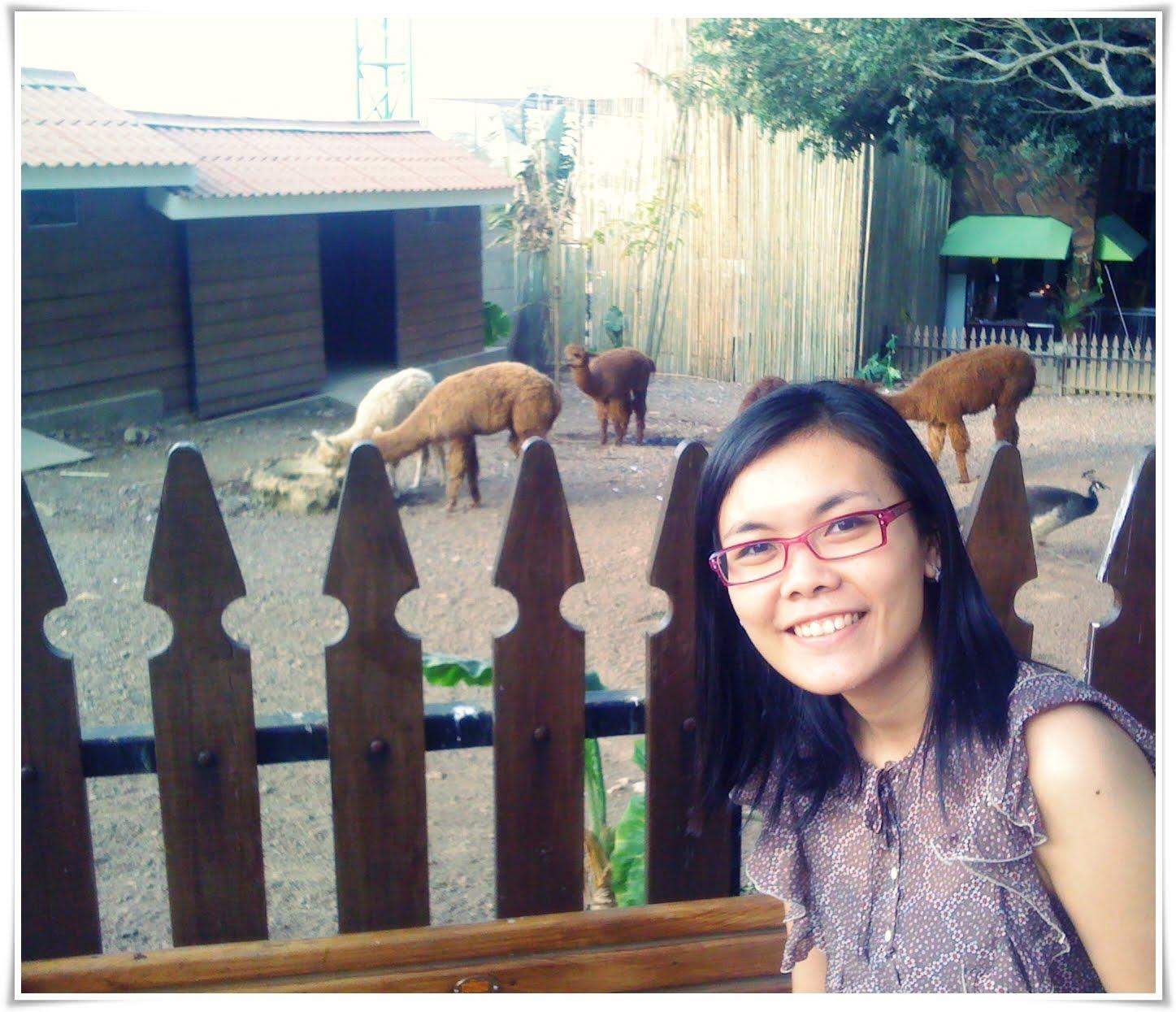 My Blog: Lovely Trip To Surabaya & Malang