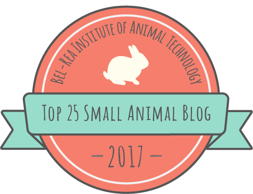 2017 Small Animal Blog Award