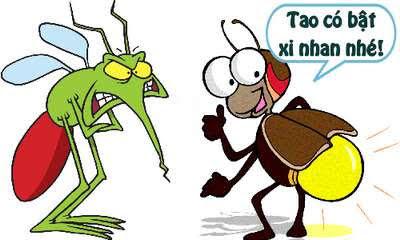 Chuyện đom đóm và muỗi