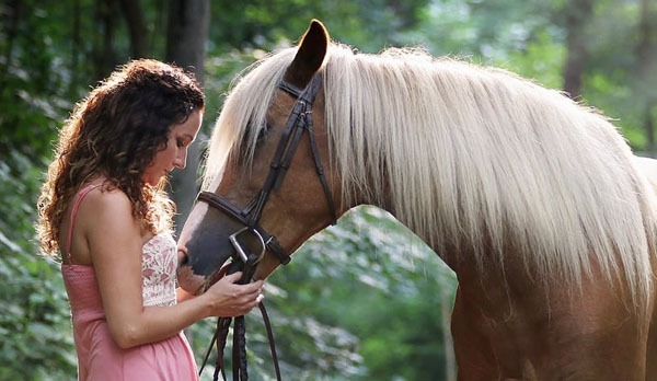 home- living with animals -pets - horse insurance