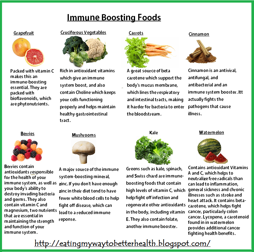 Best Foods For Immune System Support