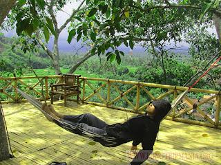 Wisata Rumah Pohon Bukit Lemped