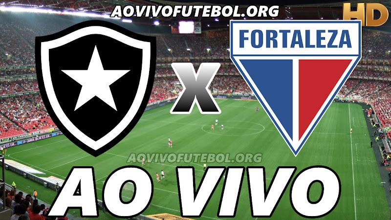 Botafogo x Fortaleza Ao Vivo HD Premiere