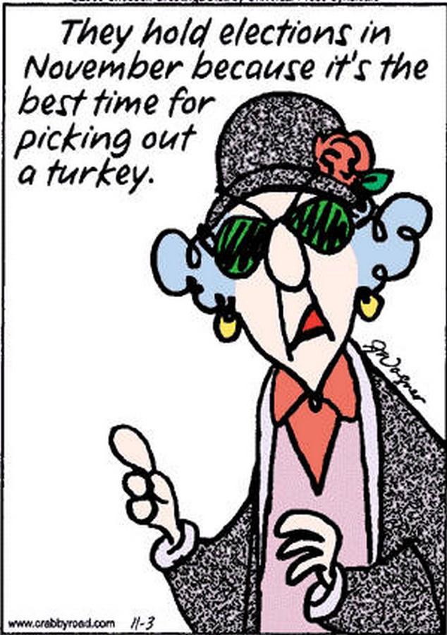 maxine funny cartoons classic fun jokes election thanksgiving cartoon lady voting humor hallmark november joke elections medicare politician comics chuck