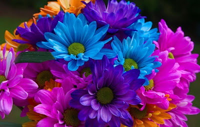 hoa sinh nhat dep nhat 7