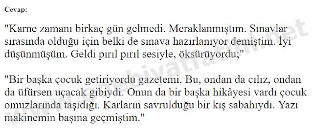 9. Sınıf Türk Dili ve Edebiyatı Sonuç Yayınları 46. Sayfa Cevapları