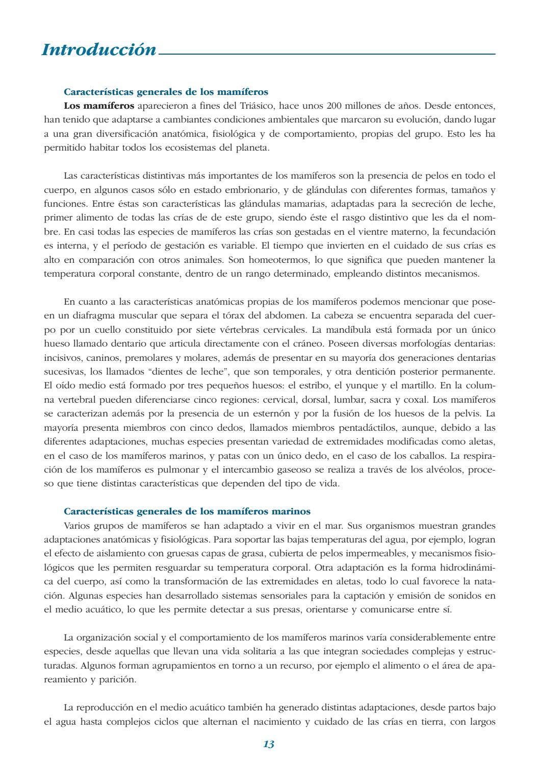 Caleta de cara al mar: LIBRO MAMÍFEROS MARINOS