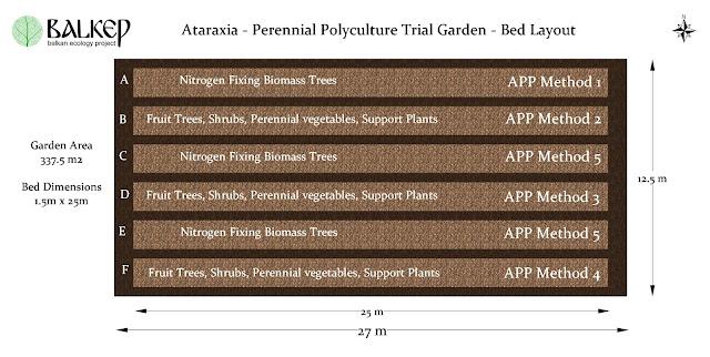 Ataraxia%2B-%2BBed%2BLayout%2B2.jpg