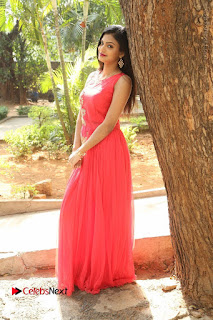 Telugu Actress Anusha Stills at Dhyavudaa Movie Teaser Launch  0080.JPG