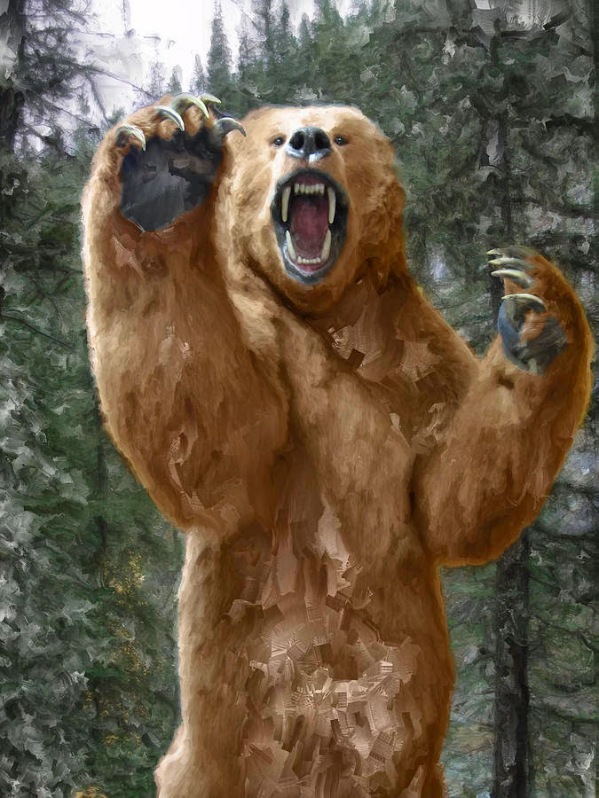 Angry Bear Standing Up Pictures to Pin on Pinterest ...