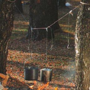 Подвеска варочной посуды над костром с помощью кострового тросика