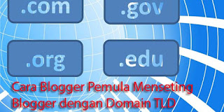 Cara Blogger Pemula Menseting Blogger dengan Domain TLD