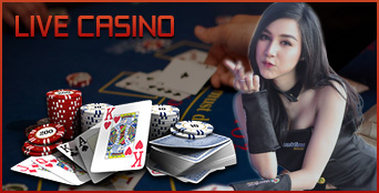 Live Casino Mainhoki