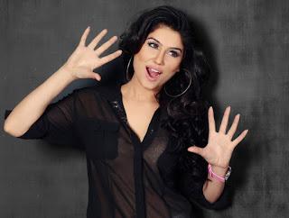 Actress Kangana Sharma  Pictureshoot Gallery  0014