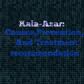 Kala-Azar: Causes,Prevention, And Treatment recommendation