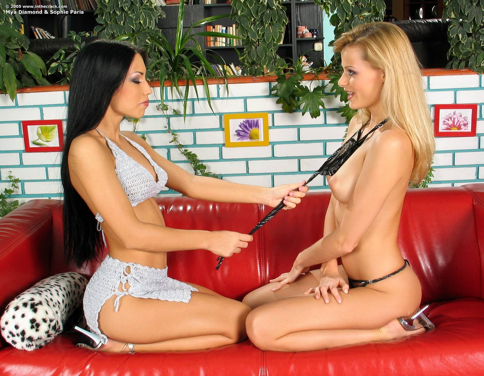 Sophie paris and mya diamond remarkable, rather