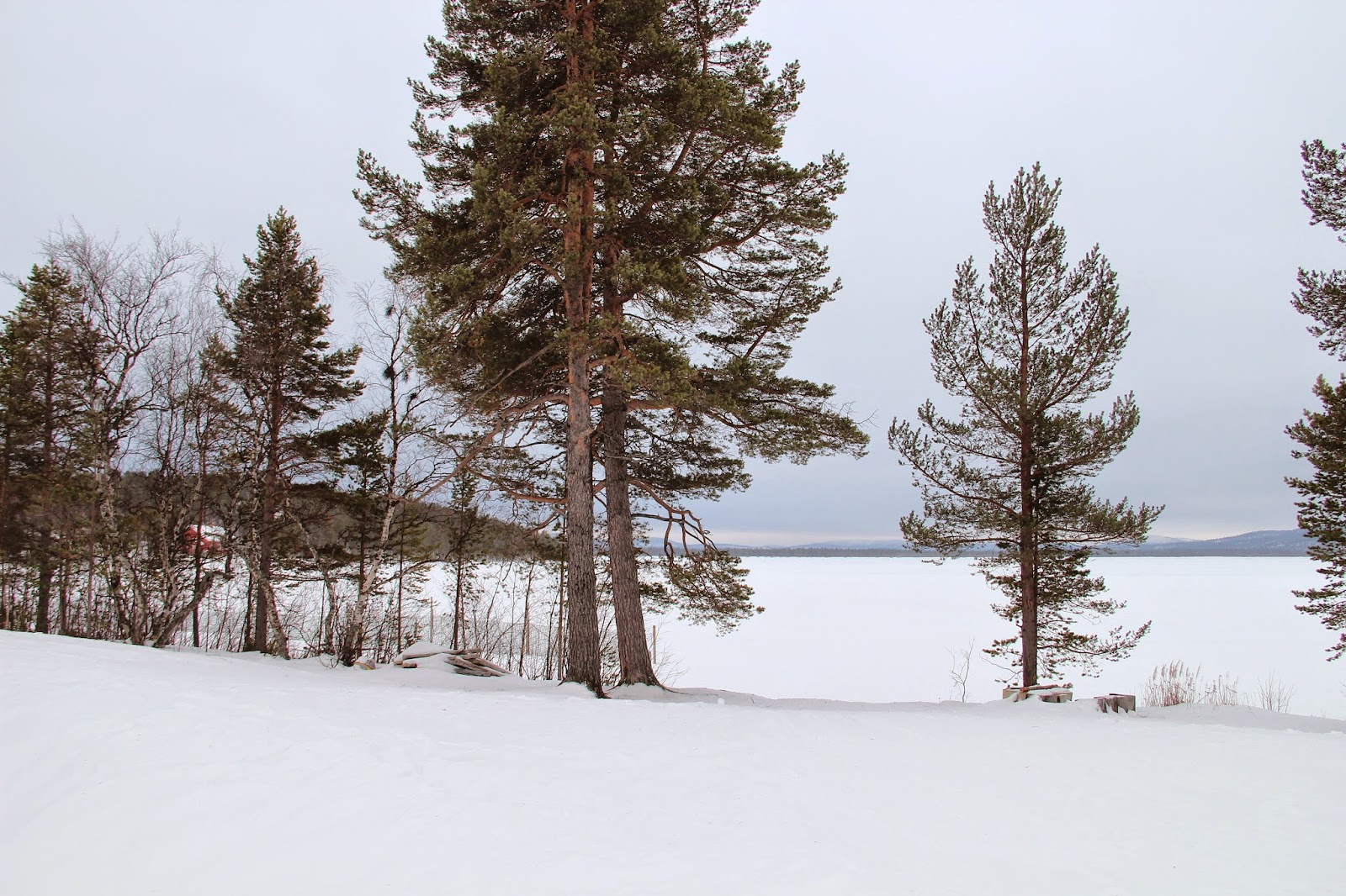 Frozen Lake Menesjarvi, Finland