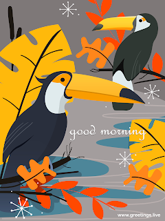 good morning birds illustration greetings cards
