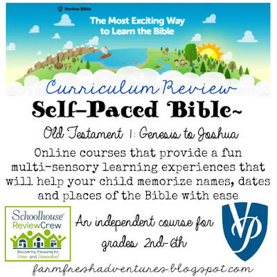Self-Paced Bible course from Veritas Press~ A review